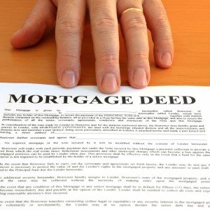 Lady Bird Deed/Quit Claim Deed