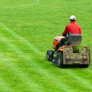 Drinking and Driving a Lawnmower